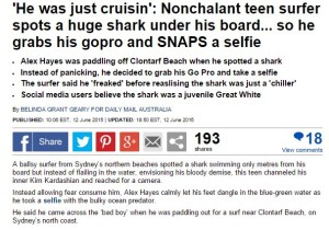 daily mail, gopro, shark photo, selfie, surfer, australia